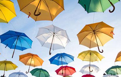 Unbranded Umbrellas for custom printing